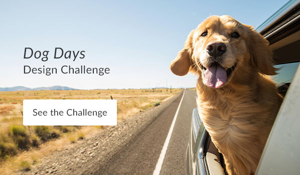 See the Dog Days Design Challenge