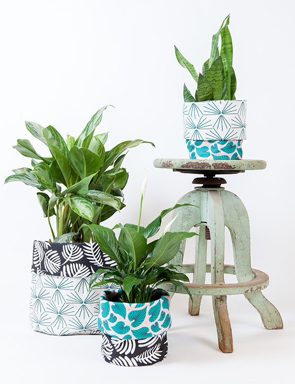 Photo of plant pots on a stand